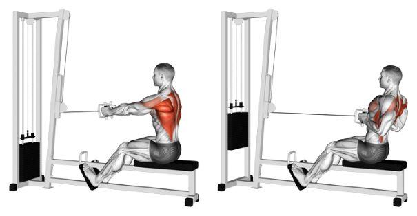 Close Grip Machine Row | Sporto Namai