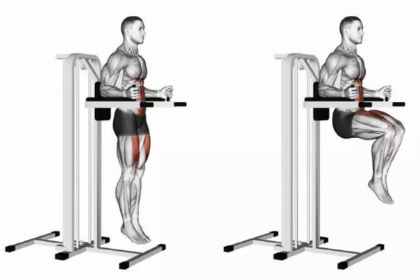 Hanging Knee Raises | Sporto Namai