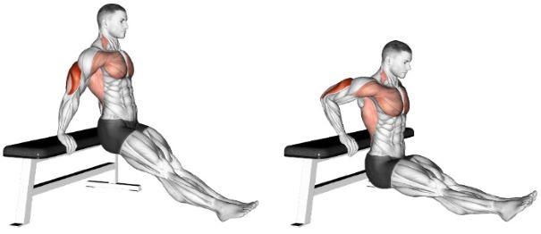 Triceps Dips | Sporto Namai
